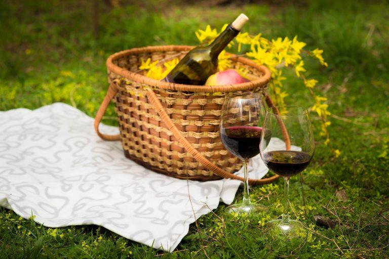 picnic tra i filari