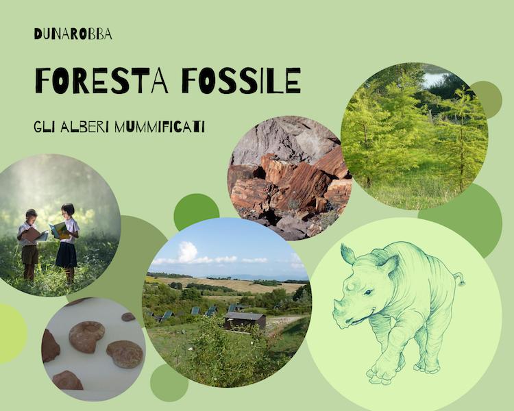 foresta-fossile-umbria-per-bambini