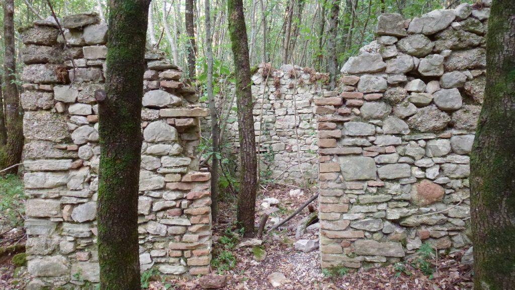 rifugio pecorai nel sentiero tra i boschi